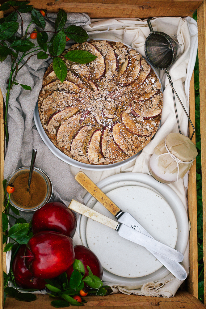 hawaij-spiced-apple-streusel-cake_-8