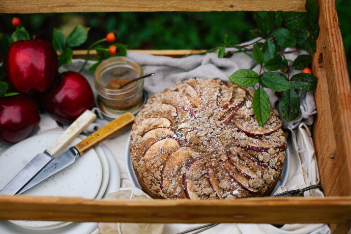 hawaij-spiced-apple-streusel-cake_-2