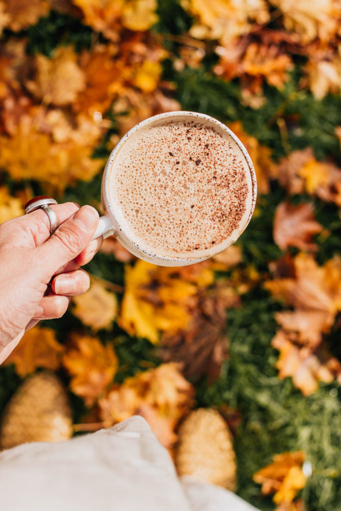 A spiced vegan latte perfect for autumn