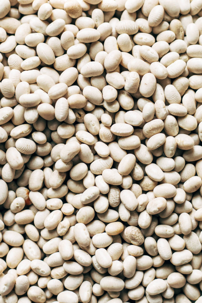Close up of uncooked white beans.