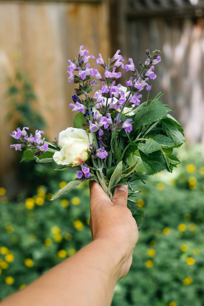 Hand holding out a bouquet of herbs and purple flowers in a garden.