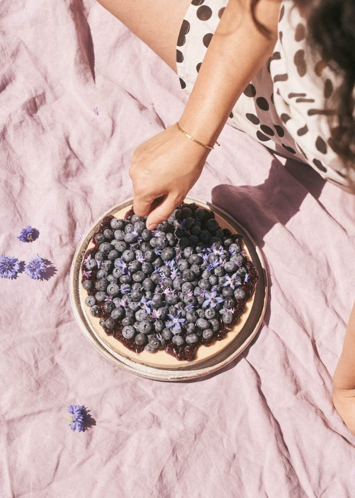 Blueberry cheesecake on a pink picnic blanket.